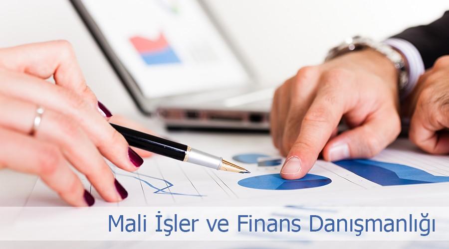 mali-isler-ve-finans-danismanligi