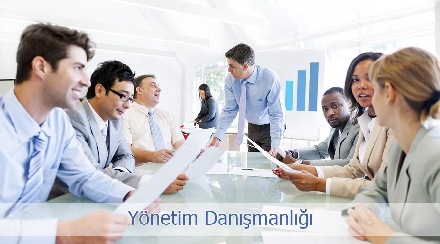 Yonetim Danismanligi